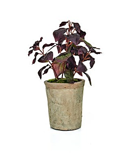 Artificial Potted Burgundy Basil