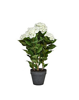 Artificial Hydrangea in Artisan Pot