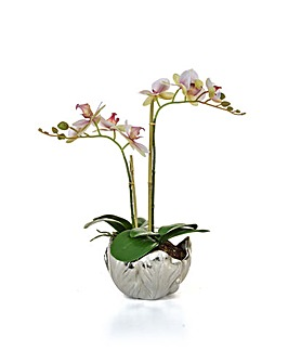 Artificial Phal Orchid in Silver Vase