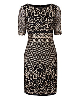 Joanna Hope Petite Lace Dress