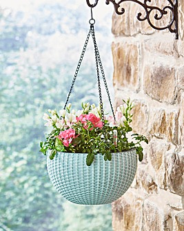 Self Watering Hanging Baskets Set of 2