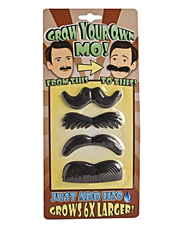 Grow your Own Mo