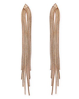 Snake Chain Long Drop Earrings