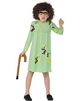 Roald Dahl Mrs Twit Costume + Free Gift
