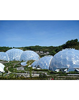 The Eden Project & Afternoon Tea for Two