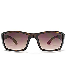 Animal Cab Sunglasses