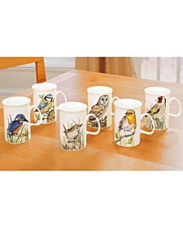 Set of 6 Birds Mugs