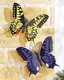 Jumbo Butterflies Pack of 2