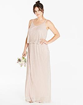Joanna Hope Metallic Plisse Maxi Dress