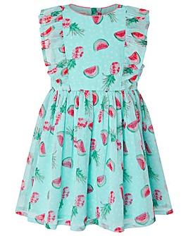Monsoon Baby Melony dress