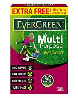 Evergreen Multi Purpose Lawn Seed 480g