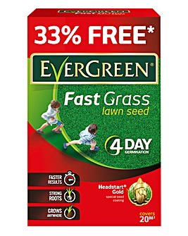 Evergreen Fast Grass Seed 20m2