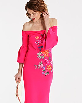 Placement Embroidered Dress