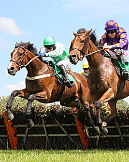 Winning Horse Racing Day for 2 - 50% off