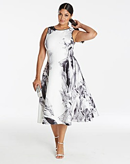 Coast Grove Print Fit and Flare Dress