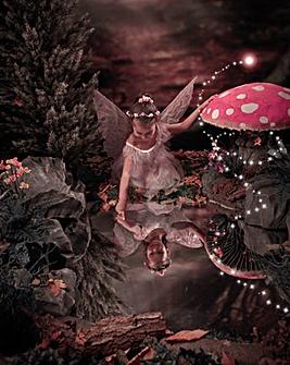 Enchanted Fairy and Elf Photoshoot