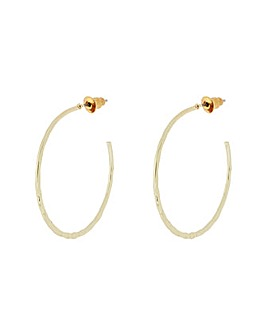 Accessorize Delicate Hammered Earrings