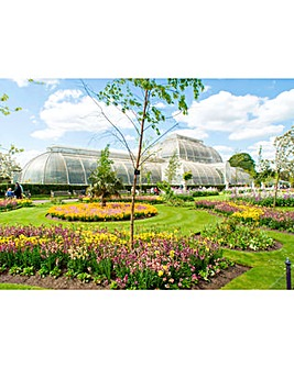 Visit to Kew Gardens & Palace for Two