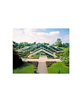 Kew Gardens Visit & Thames River Cruise