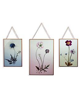 Floral prints in Hanging Copper Frame