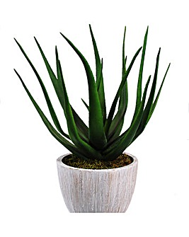 Artificial Plant Potted Aloe